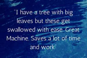 i-have-a-tree-with-big-leaves-but-these-get-swallowed-with-ease.-great-machine.-saves-a-lot-of-time-and-work.-1492814867-49.187.149.60.jpg